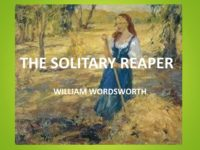 the-solitary-reaper